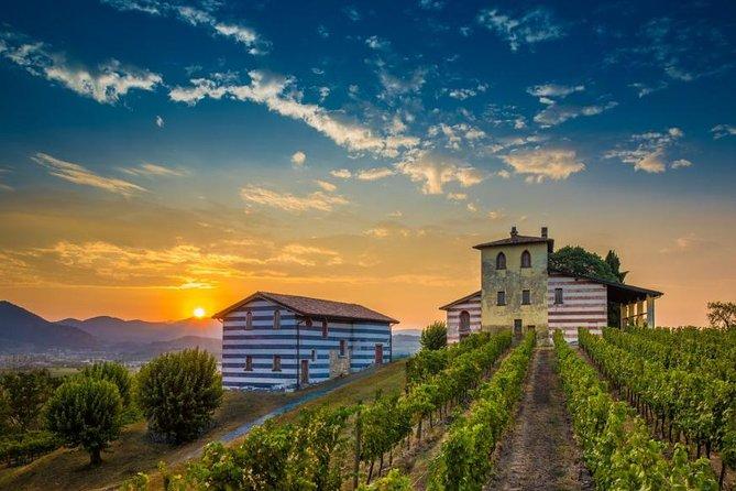 Berlucchi wine tasting experience, Brescia, Itália