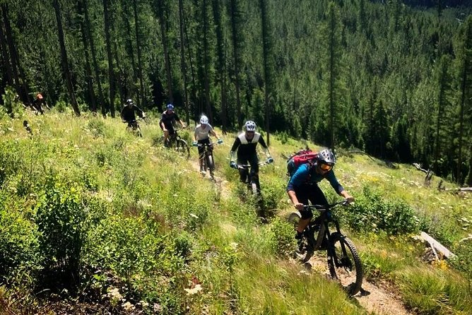 Professionally guided full-day tours in the Tally Lake Ranger District just west of Whitefish, Montana. We'll spend up to six hours on trail, riding up to three sections of predominantly downhill trail through sub-alpine forests, mountain meadows, and across rushing creeks.