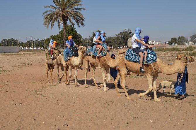 Camel ride at the sunset in Agadir with Hotel Transfers, Agadir, MARRUECOS