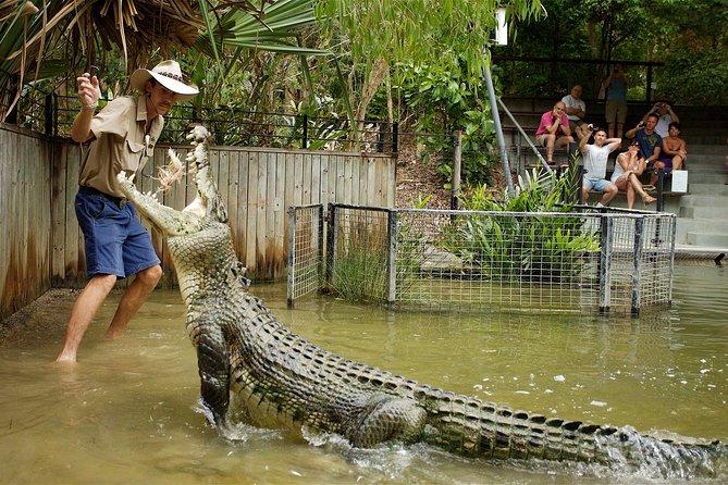 Hartley's Crocodile Adventure Half-Day Tour, Cairns y el Norte Tropical, AUSTRALIA