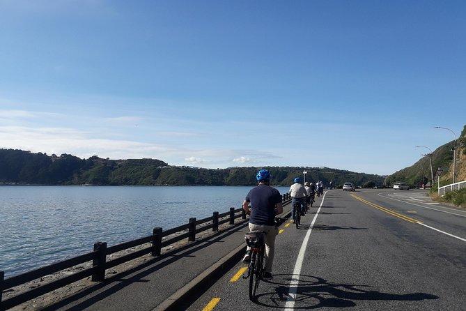Wellington Electric Bike Tour, Wellington, NUEVA ZELANDIA