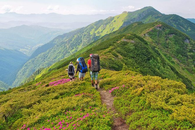 Departure on all Saturdays and Sundays between 1 July and 15 September 2020. Booking on only these dates will be accepted.<br><br>The most colorful trek you will ever find, the green meadows, the white clouds and the multi-colored flowers blend to make the dreamlike Valley of Flowers trek.<br><br>Declared as a UNESCO world heritage site, the Valley of Flowers is a preciously preserved National Park that sits in the laps of the Garhwal Himalayas 14,400ft above sea level. The valley boasts a huge spectrum of millions of rare species of flowers such as saxifrages, sediams, lilies, poppy, calendular, daisies, geranium, zinnia and petunia, some of which are only found in this region. One can also find a variety of rare and endangered species of animals like Asiatic black bear, brown bear, snow leopard, blue sheep and more.<br><br>Another alluring highlight of the trek is the alpine lake of Gurudwara Shri Hemkund Sahib, highest Gurdwara in the world, huddled high in the laps of the Himalayas.