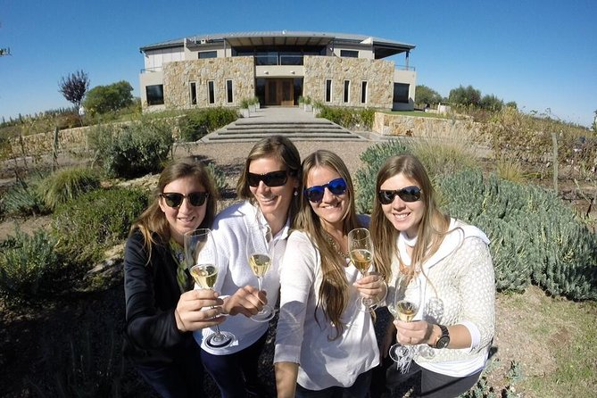Mendoza Hop-On Hop-Off Wine Tour, Mendoza, ARGENTINA
