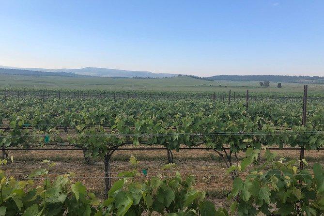 Wine Tour from Durango, Colorado, Durango, CO, ESTADOS UNIDOS