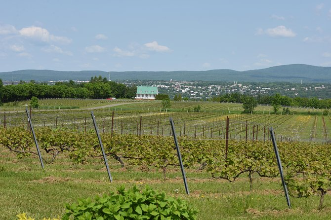 Ile d'Orleans Food Tour from Quebec City, Quebec, CANADA