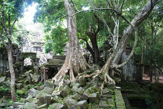 Beng Mealea Temple Half-day Private tour, Angkor Wat, CAMBOYA