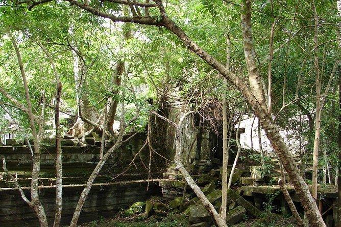 Kulen Waterfall & Beng Mealea temple Full-day private tour, Angkor Wat, CAMBOYA