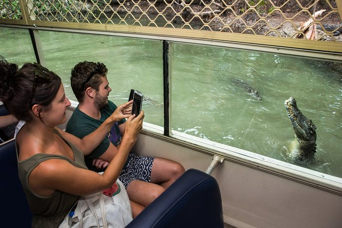 Crocs, Creatures and Culture ex Northern Beaches, ,