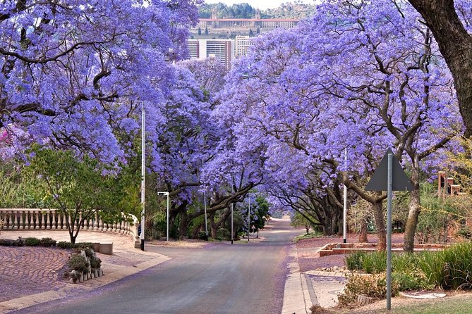 "Every so often Pretoria or Tshwane is regarded as ""Jacaranda City"" and justifies the name in late spring when the Jacaranda trees blossom into a flood of purple. It's the administrative capital city of South Africa and immersed in the ancient history of South Africa. All these sightings make the city a prefect starting point for adventurous holidaymakers."