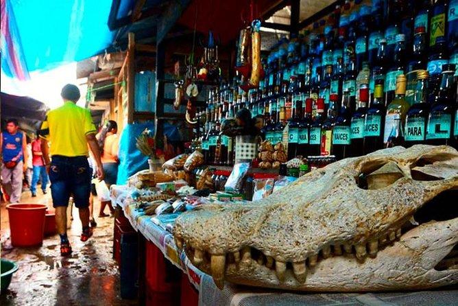 Recorrido por Iquitos y Belén con la venecia loretana, Iquitos, PERU
