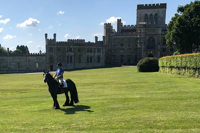There is no better hacking so close to London. The horses are Irish Cobs and are very safe. We cater for all abilities and can give lessons first.