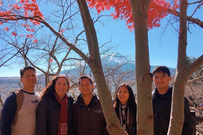 Private Tour: Chartered Car to Mt. Fuji Lake Kawaguchiko or Hakone and Lake Ashi, Tokyo, JAPON