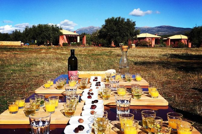 Olive oil tasting & Wine tasting in Laconia, Greece!, Kalamata, GRECIA