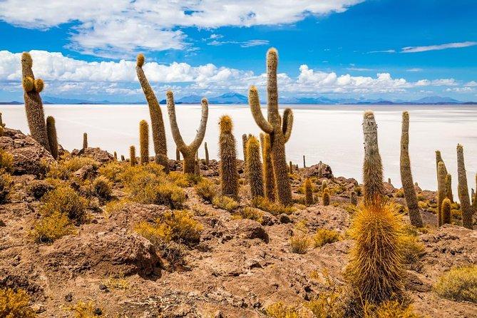 Tour Salar de Uyuni 2 días 1 noche / Servicio en Grupo / Volcan Tunupa /, Uyuni, BOLIVIA