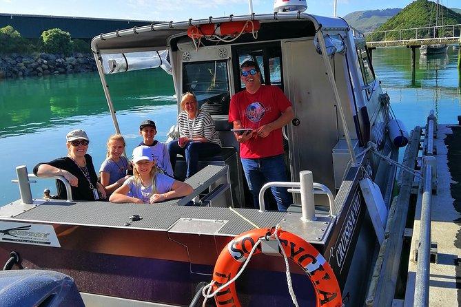Small-Group Dunedin Wildlife Cruise, Dunedin y la peninsula de Otago, NOVA ZELÂNDIA