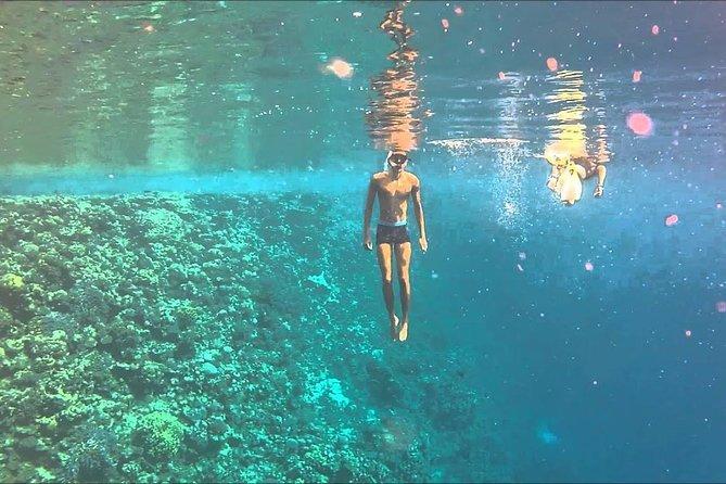 Sharm El Luli Snorkeling Sea Trip - Marsa Alam, ,