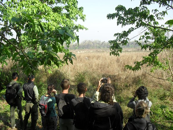This is one of the adventures tour in Chitwan. A typical canoe trip makes you more excitement and adventure. <br>You have chance to see Gharial(Gavialis gangeticus), is one of the Critically Endangered crocodile species by IUCN and other common species is Marsh Mugger crocodile. Also great chance to see many species of birds etc.<br>Jungle walk is more peaceful and gentle walk. Walking on the wild animals trail is more adventure. To find wild animals, passing bushes, forest is more exciting.<br>Jeep Tour is fine well. You can visit big area of national park and high chance to see rare animals such as tiger, bear, leopard etc.