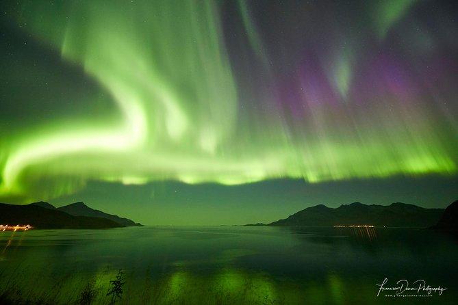 Tromso: Private Aurora Chase by Minivan, Tromso, NORUEGA
