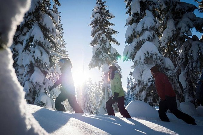 Whistler Snowshoeing Adventure with Optional Peak 2 Peak Ticket, Whistler, CANADA