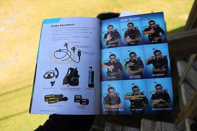 Roatan Discover Scuba Diving Experience, Roatan, HONDURAS