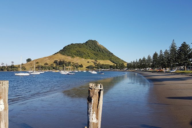We are one of the few small group Tour/Excursion providers in Tauranga that will take you to any attraction on your wish list but we are a little limited by your ship schedule.<br>We pride ourselves on showing you our beautiful part of the world with good conversation,courtesy and humour included in all of our tours.<br>