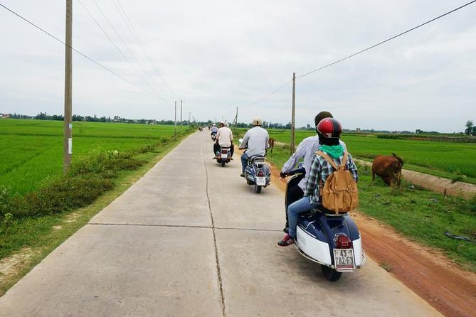 My Son Sanctuary- Countryside Vespa, Hoi An, VIETNAME