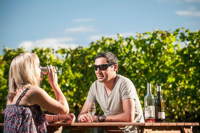 Martinborough Gourmet Wine Tasting Tour Including Lunch from Wellington, Martinborough, NUEVA ZELANDIA