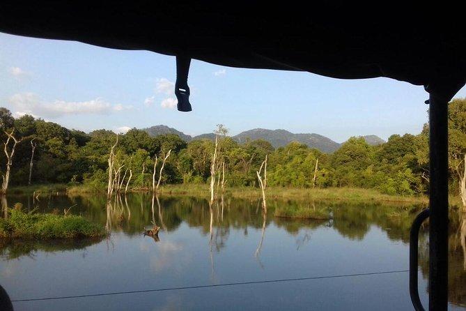 Udawalawe National Park safari trip from Hikkaduwa, Hikkaduwa, Sri Lanka