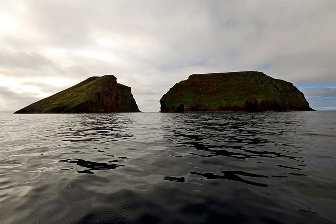 Boat Tour to Cabras Islets (2 hours), Terceira, PORTUGAL