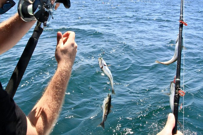 Halifax Deep Sea Fishing, Halifax, CANADA