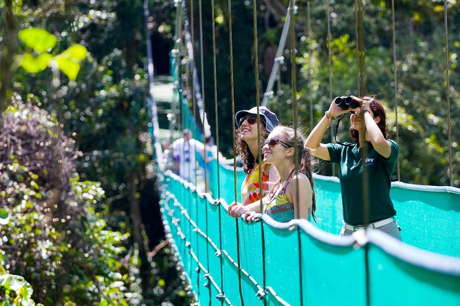 9-Day Best of Northwest Costa Rica from San Jose: Arenal Volcano National Park, Monteverde Cloud Forest and Guanacaste, Tamarindo, COSTA RICA