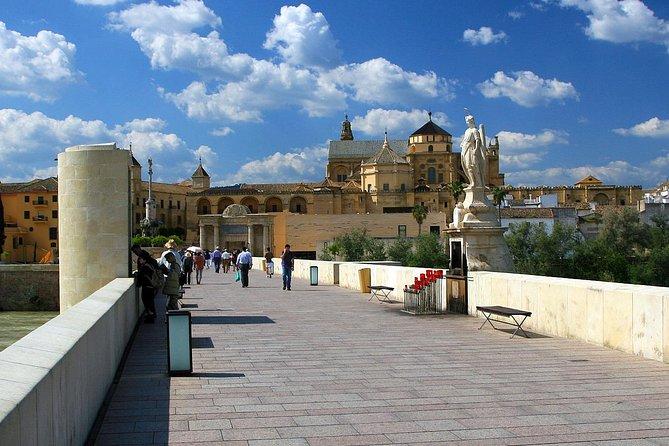 Private 3-hour Walking Tour of Cordoba with official tour guide, Cordoba , ESPAÑA