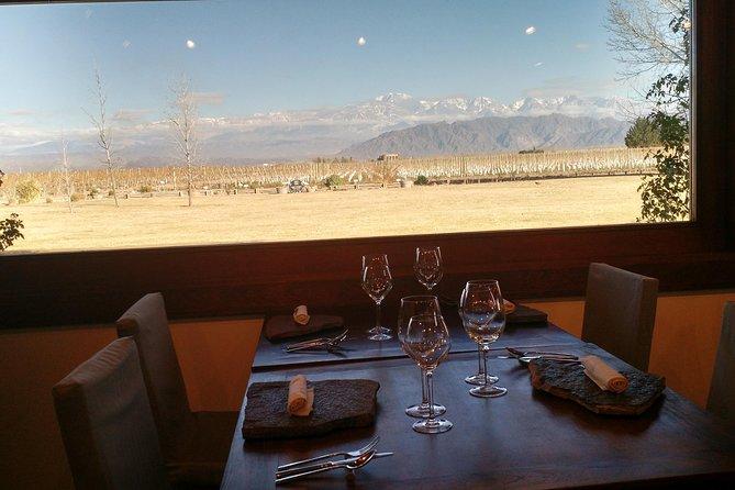 MTB - Un recorrido por las bodegas y sus viñedos, Mendoza, ARGENTINA