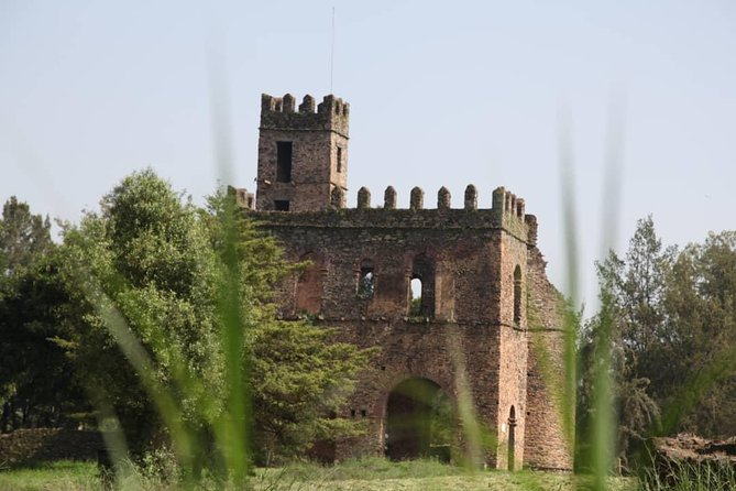 . Explore the sites of Gondar, including a visit to the Royal Enclosure, with six castles and several other buildings. Additionally, visit Fasilidas's Pool, still used for Timket celebrations today, Debre Birhan Selassie church, with the most famous ceiling in Ethiopia and Kuskuam, a former palace in a partial state of ruin overlooking the ancient city of Gondar.
