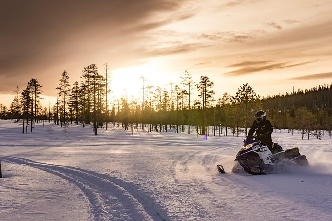 Enjoy the magic of Lapland with Rovaniemi's most popular winter activities: husky and reindeer farm visiting and snowmobiling!