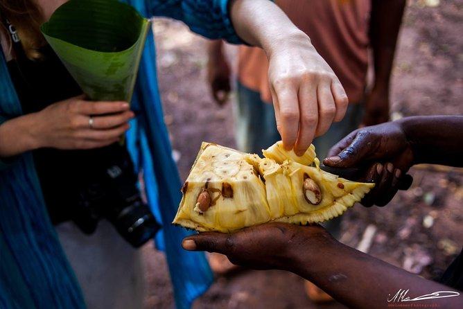MÁS FOTOS, Fruits & Spices Adventure