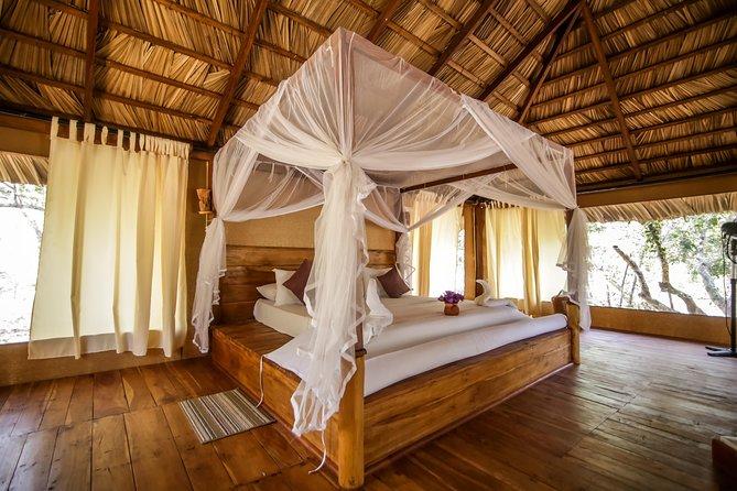 All Inclusive Tented Camping & Luxury Safari Tour in Yala, Galle, Sri Lanka