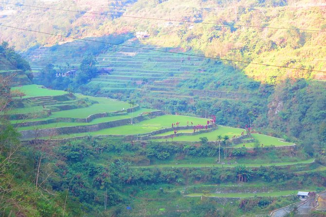 Explore on the new 8th wonder of the world thru a local tour guide. Hike to the villages of Cambulo-Batad- Bangaan and also discover a mighty mountain waterfall.