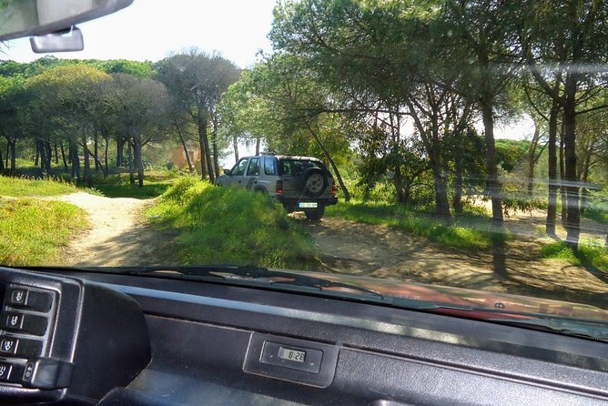 Tour meio dia de Jipe pela nossa costa e serra Algarvia, Portimao, PORTUGAL