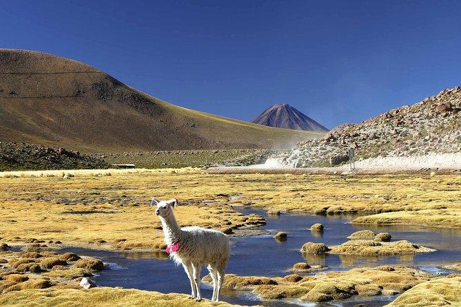Salar De Uyuni (Classic 3 Days Trip) English Guide, Uyuni, BOLIVIA
