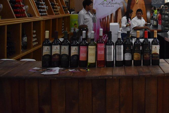 Cavas Freixenet Wine Tour from Mexico City, Ciudad de Mexico, MEXICO