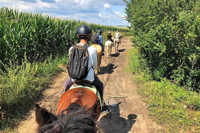 MÁS FOTOS, Horseback Riding Tour In Brasov - Ride Horses Through Fields, Forests And Hills