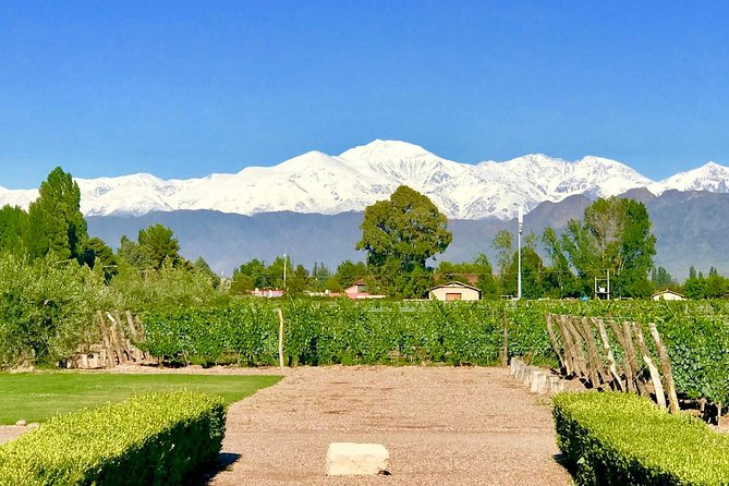 Half Day Private WineTour, Lujan de Cuyo, Mendoza, ARGENTINA