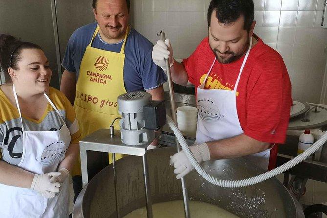 Cheese & ricotta making – Teramo (Abruzzo) Italy, Pescara, Itália