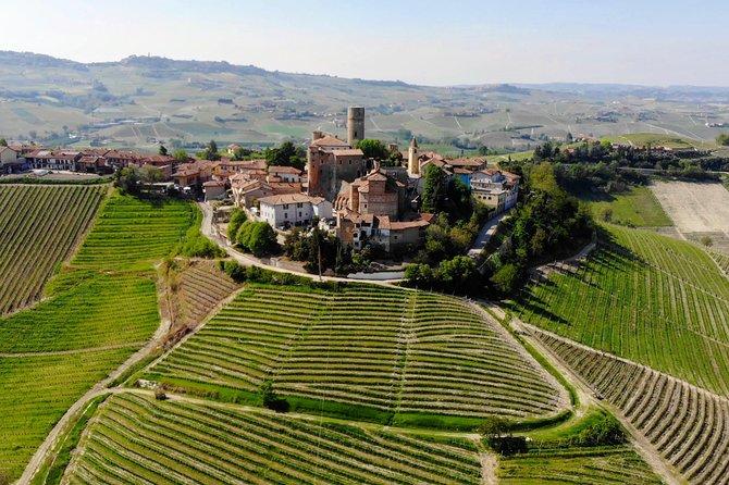 Barolo and Barbaresco Concierge - Your Somm designed itinerary, Langhe-Roero y Monferrato, ITALIA