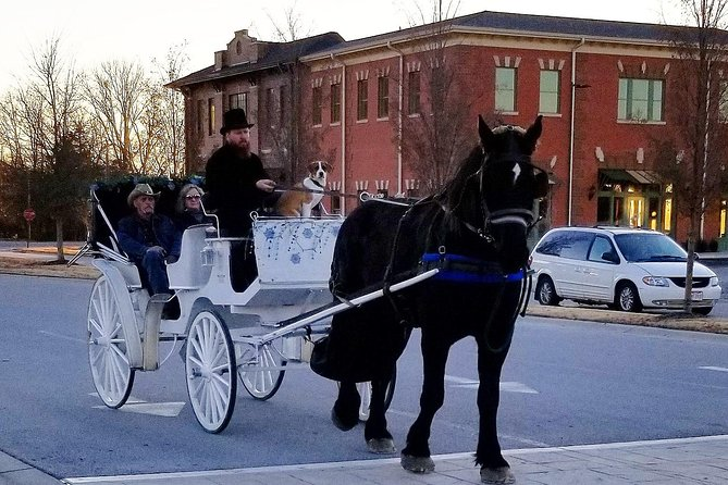 Private Chattanooga Horse & Carriage Tour, Chattanooga, TN, ESTADOS UNIDOS
