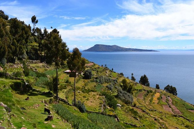 Lake Titicaca Full Day Experience, Cusco, PERU