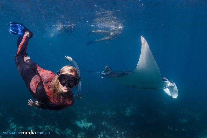 For the snorkelling connoisseur … for<br>those that really want to explore the best<br>of the pristine Ningaloo Reef.<br>This tour includes all the elements of our<br>half day Manta Interaction and much<br>more!<br>Get away from the crowds and let us<br>introduce you to some of our amazing<br>wildlife… plus millions of fish and<br>hundreds of different coral species!
