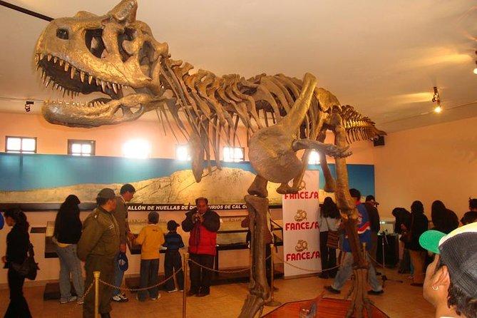 Dinosaur Tracks at Cal Orck'o Admission Ticket, Sucre, BOLIVIA