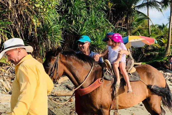 Horseback riding and Organic Farm Experience, Ciudad de Panama, Panama